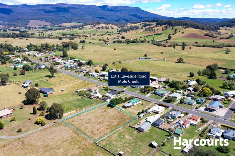 Lot 1 Caveside Road, Mole Creek TAS 7304