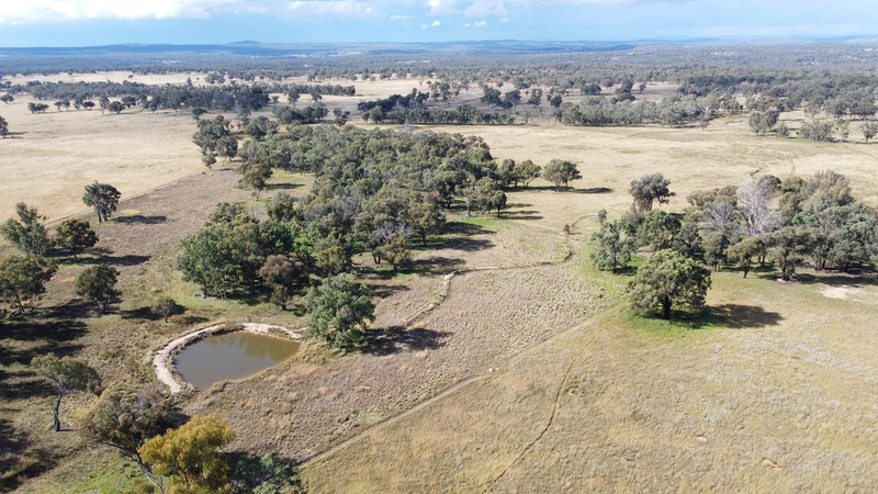 Lot 2 - 456 Grove Road, Inverell NSW 2360
